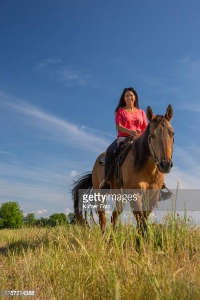 mme monter son cheval à travers le champ - frau photos et images de collection