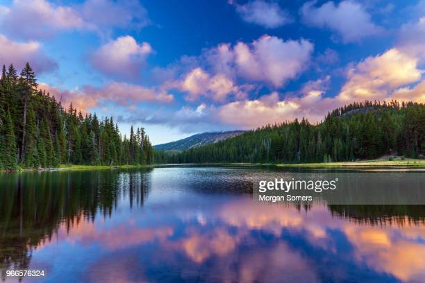 mt bachelor reflecting in todd lake bend, oregon - sunset lake stock photos and pictures