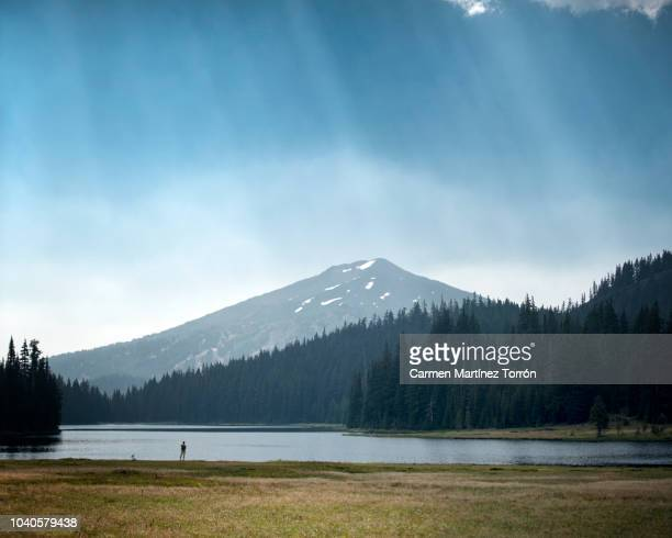 mt bachelor view from todd lake bend, oregon - mt hood national forest stock pictures, royalty-free photos & images