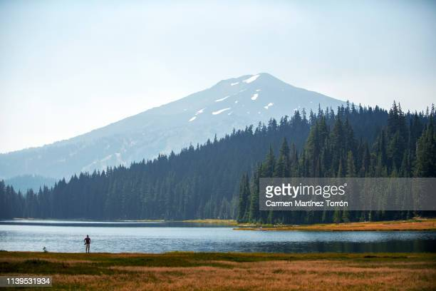 mt bachelor view from todd lake bend, oregon - cascade range stock pictures, royalty-free photos & images