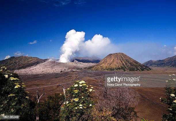 mt. bromo in east java indonesia - bromo tengger semeru national park stock pictures, royalty-free photos & images