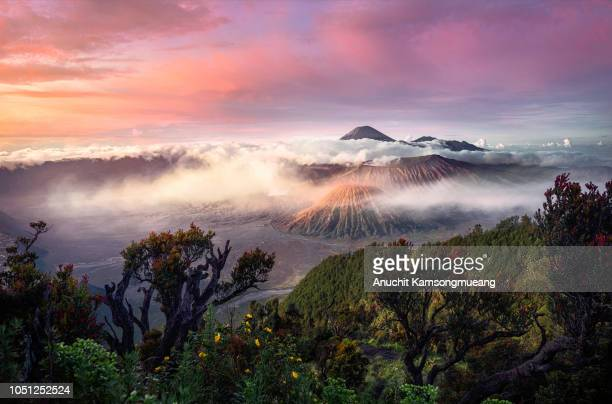 mt. bromo - mt bromo stock photos and pictures