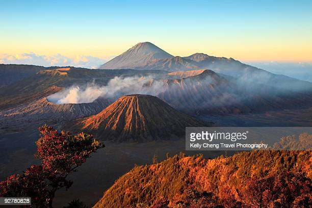 mt bromo - mt bromo stock photos and pictures