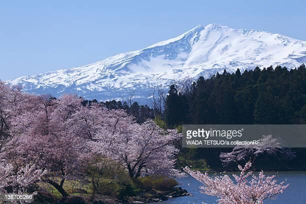 Mt. Chokai, Akita Prefecture, Honshu, Japan