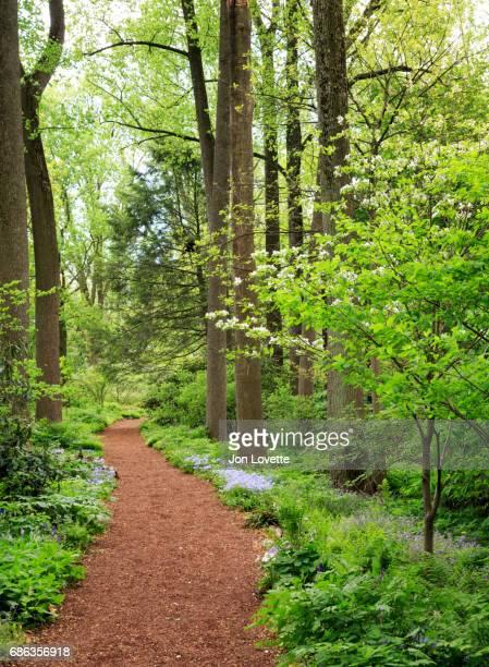 mt cuba botanical gardens in spring, brandywine valley landmark - wilmington delaware stock pictures, royalty-free photos & images
