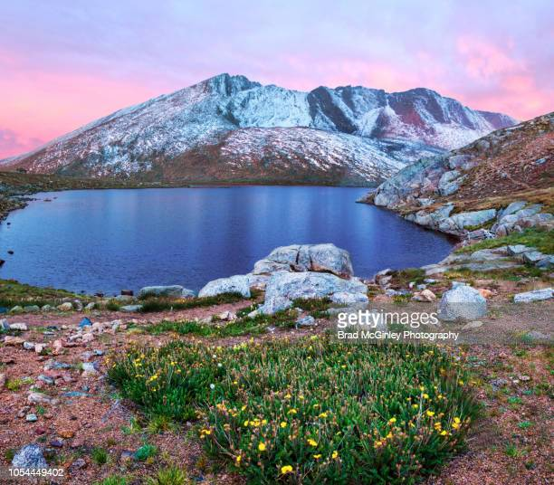 mt evans sunrise - front range mountain range stock pictures, royalty-free photos & images