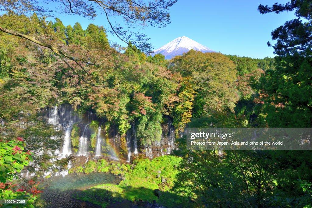 Mt Fuji and Shiraito falls in Autumn, Fujinomiya, Shizuoka Prefecture : Stock Photo
