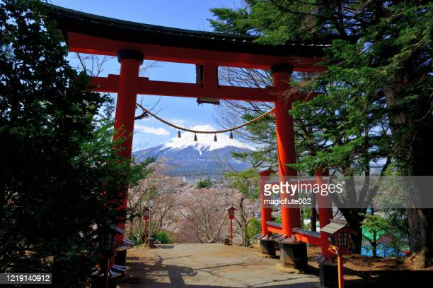 mt fuji and torri gate of shinto shrine during cherry blossom season - shinto shrine stock pictures, royalty-free photos & images