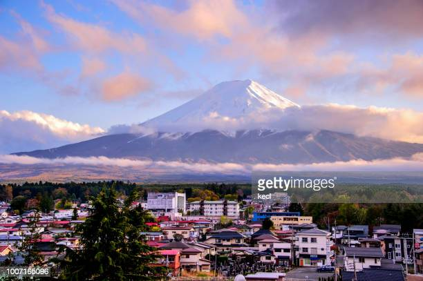 mt. fuji & cherry blossoms - yamanashi prefecture stock pictures, royalty-free photos & images