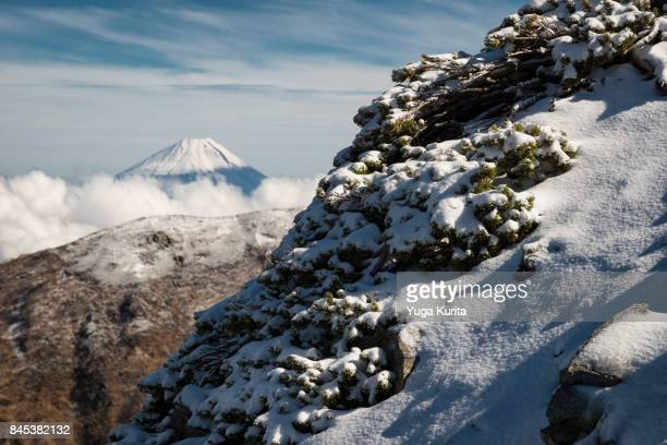 Mt. Fuji from a Snowy High Mountain