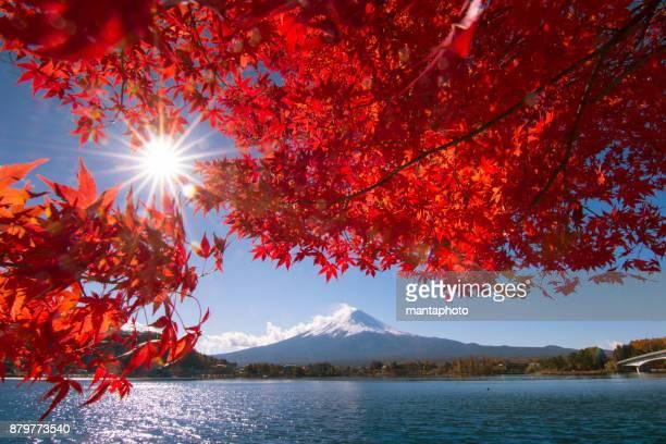 秋ビュー河口湖からの富士山