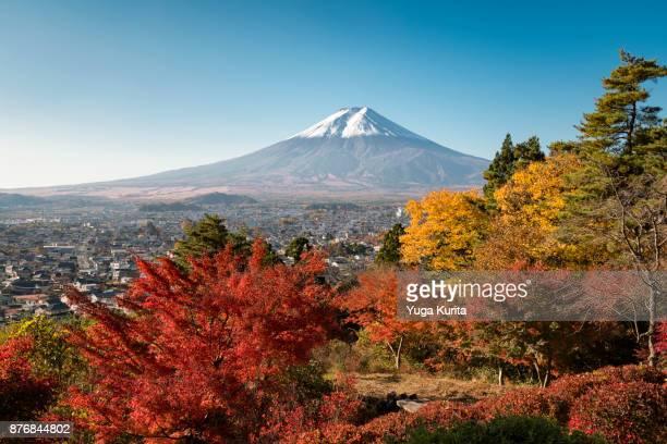 Mt. Fuji over Colorful Autumn Trees