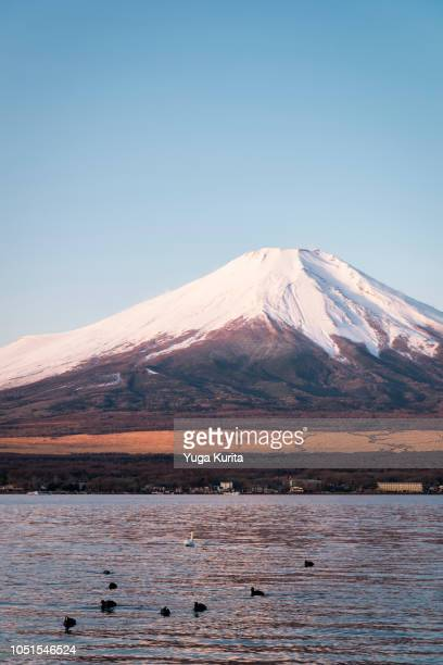 Mt. Fuji over Lake Yamanaka in the Morning