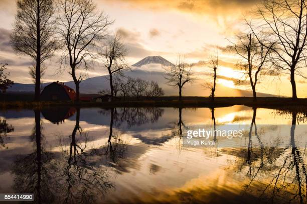 mt. fuji reflected in a pond at sunrise - fuji hakone izu national park stock photos and pictures