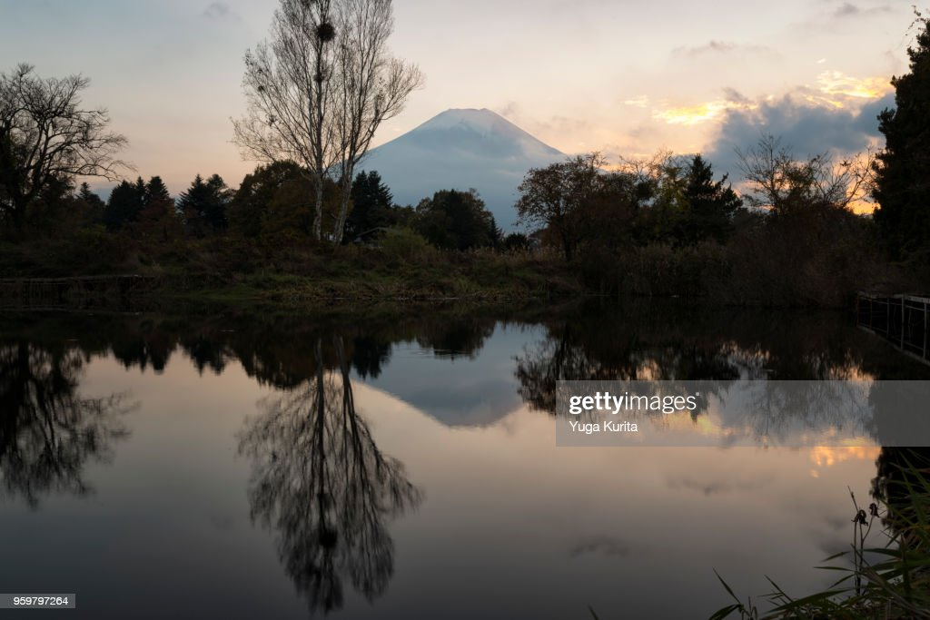 Mt. Fuji Reflected in a Pond : Stock-Foto