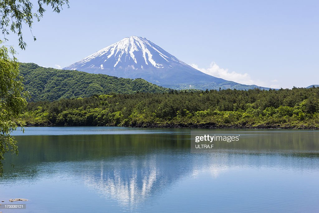 Mt. Fuji reflected in lake, saiko : Stock Photo