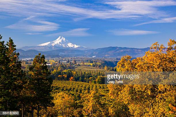 mt. hood, hood river valley, columbia river gorge national scenic area, oregon - hood river valley stock photos and pictures