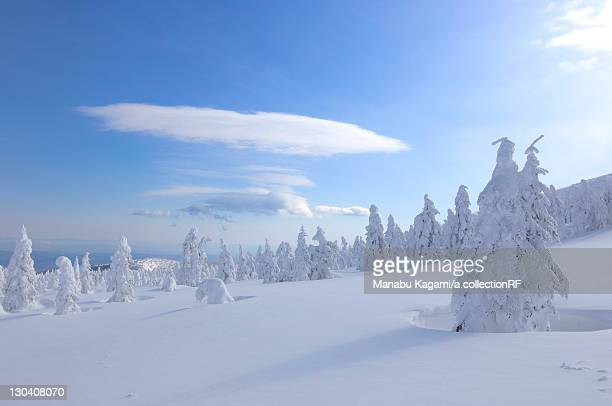 mt. jizo in winter, yamagata prefecture, japan - 山形県 ストックフォトと画像