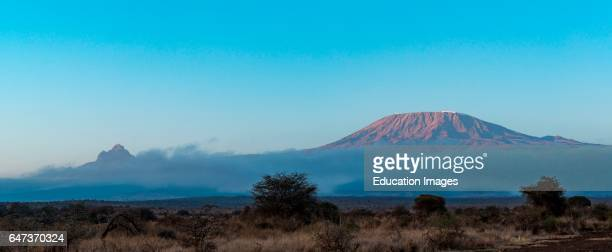 Mt Kilimanjaro and Mt Mawenzi in Tanzania on the left in the background Satao Elerai Conservancy Near Amboseli National Park Kenya