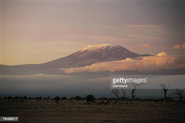 mt. kilimanjaro from amboseli national park , kenya , africa - mt kilimanjaro stockfoto's en -beelden