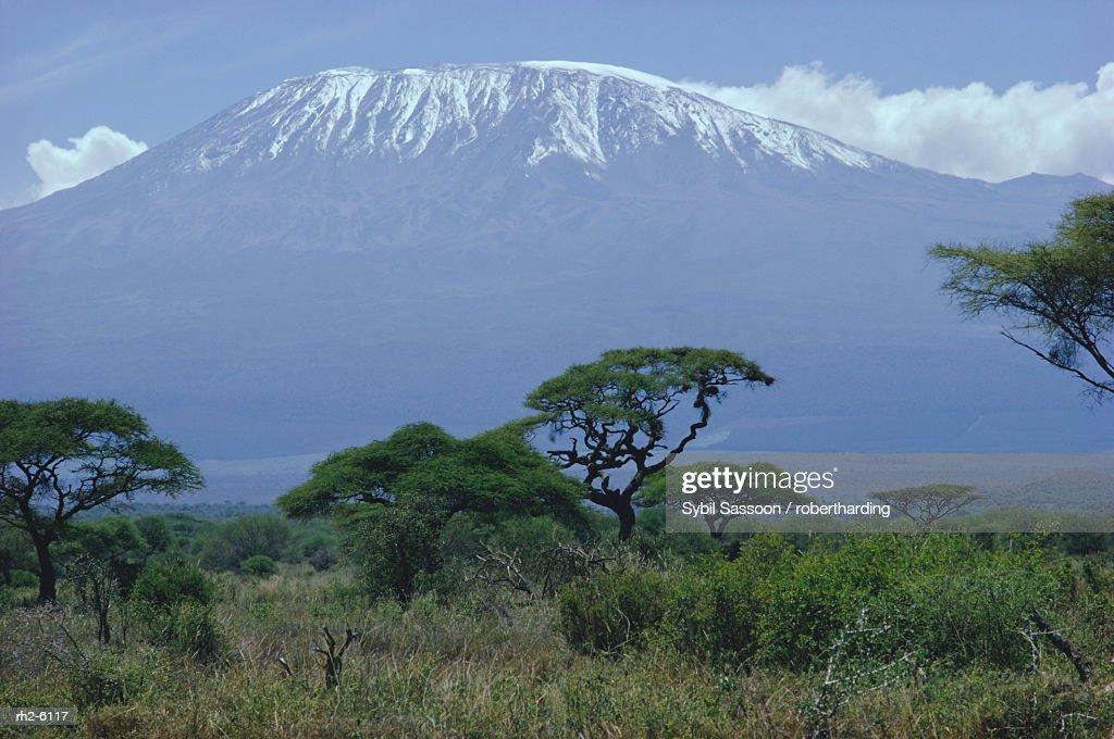 Mt. Kilimanjaro, Kenya, Africa : Foto de stock