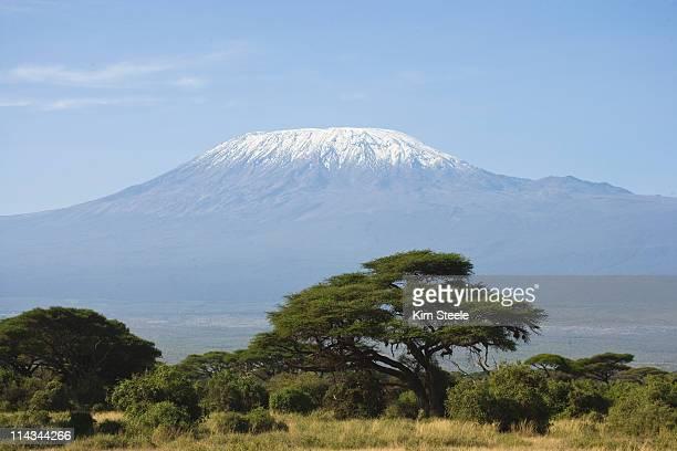 mt. kilimanjaro, savanah in foreground. - mt kilimanjaro stockfoto's en -beelden