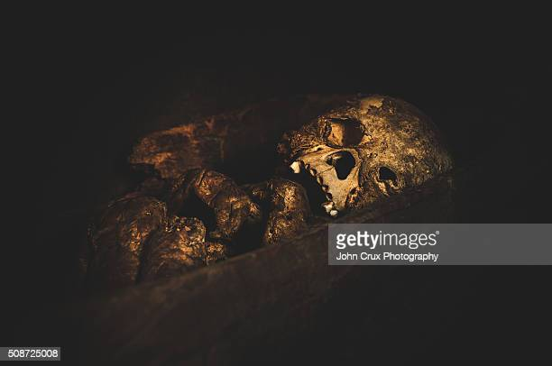 mt pulag baby mummy - mummified stock photos and pictures