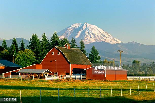 mt rainier and barn - washington state stock pictures, royalty-free photos & images