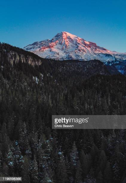 mt rainier at dawn - cascade range stock pictures, royalty-free photos & images