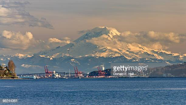 mt. rainier from discovery park - spokane stock pictures, royalty-free photos & images