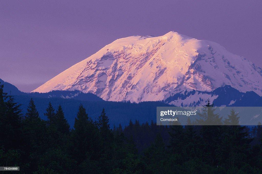Mt. Rainier : Stockfoto