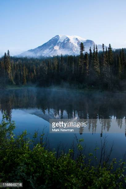mt rainier reflection - usa stock pictures, royalty-free photos & images