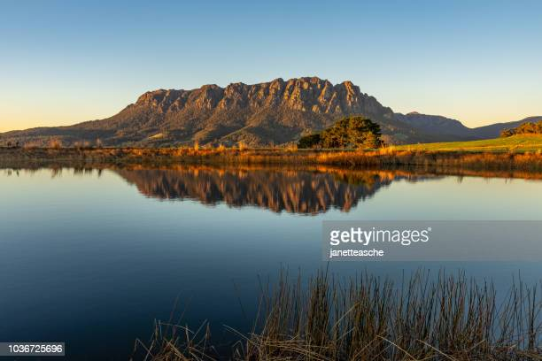 mt roland at sunrise, tasmania, australia - tasmania stock pictures, royalty-free photos & images