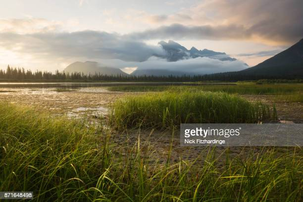 Mt Rundle and fog banks at sunrise from the shores of Vermilion Lake, Banff National Park, Alberta, Canada