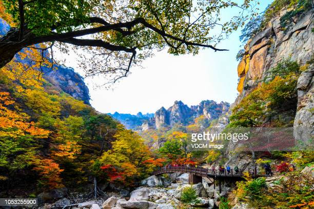 vh531 mt. seolark - ukraine stock pictures, royalty-free photos & images