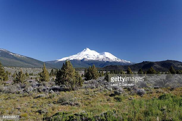 mt shasta from the north - mt shasta stock pictures, royalty-free photos & images