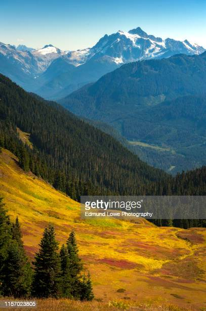 mt. shucksan as seen from the excelsior ridge trail. - cascade range stock pictures, royalty-free photos & images