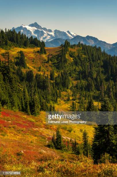 mt. shucksan as seen from the excelsior ridge trail. - national forest stock pictures, royalty-free photos & images