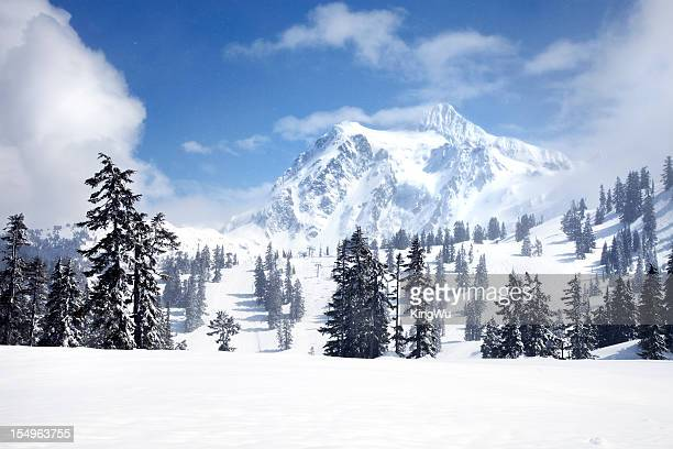 mt shuksan - cascade range stock pictures, royalty-free photos & images