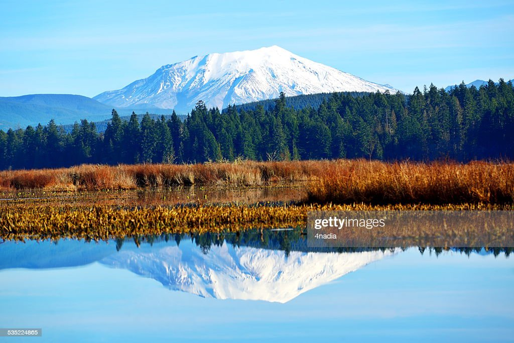 Mt St Helens reflecting in Silver Lake : Stock Photo