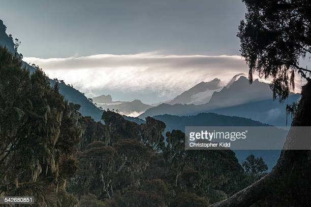 Mt. Stanley, Rwenzori Mountains, Uganda