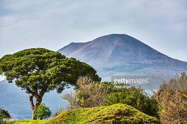 Mt Vesuvius in background of Pompeii