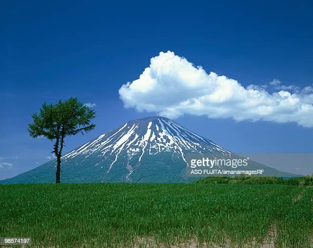 Mt. Yotei, Makkari, Hokkaido, Japan