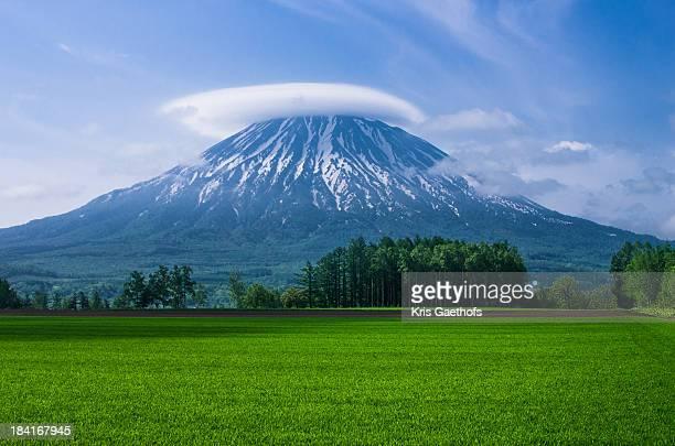 Mt Yotei watching over surrounding farm fields.