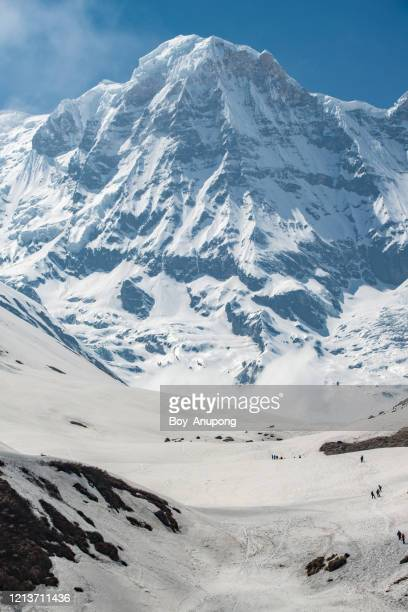 mt.annapurna south (7,219 m) view from mbc (machapuchare base camp) in annapurna sanctuary, nepal. - annapurna south stock pictures, royalty-free photos & images