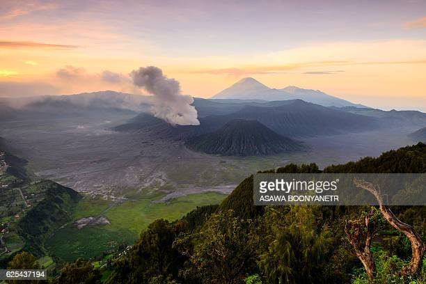 mt.bromo in the twilight morning - bromo crater stock pictures, royalty-free photos & images