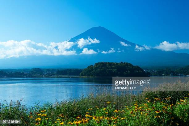 mt.fuji and lake kawaguchiko - miyamoto y ストックフォトと画像