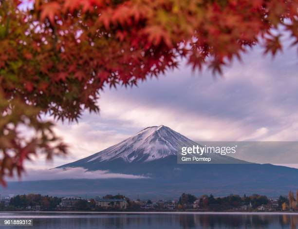 Mt.Fuji and leaves are changing color, yamanashi , japan