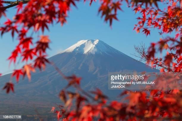 mt.fuji in autumn, japan - 暦月 ストックフォトと画像