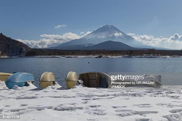 mt.fuji in winter, japan - marderhund stock-fotos und bilder